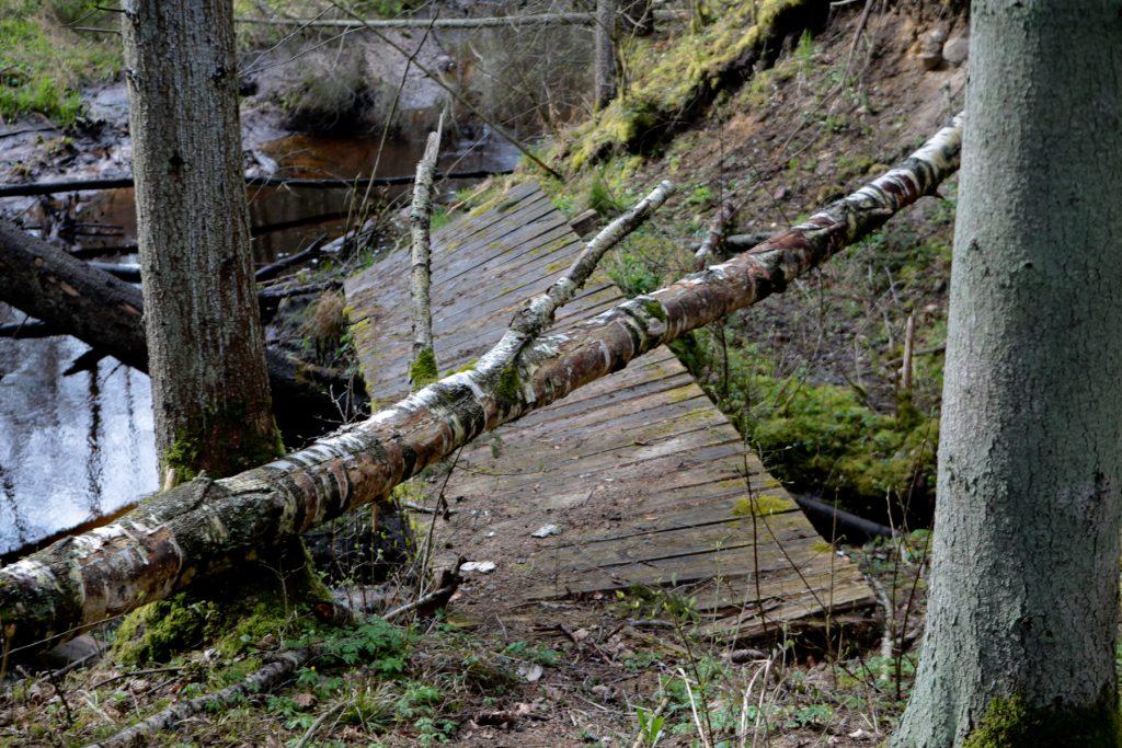 Sabrukušais tiltiņš